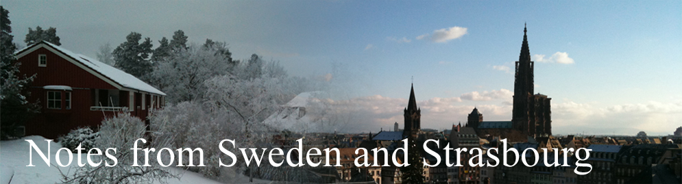 Notes from Sweden and Strasbourg